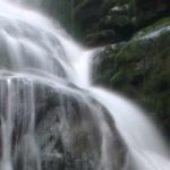La Vita è come l'acqua và dove gli pare