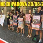 Padova difende la vita, sacra e profana