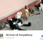 """Aiutiamo """"gli amici di Tomy&Romy"""""""